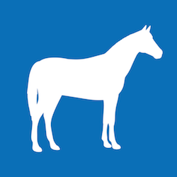 PIP in der Pferdehaltung Icon